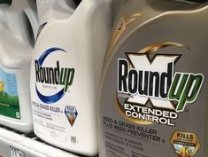US jury finds Roundup weed killer likely caused cancer, awards couple $2 billion