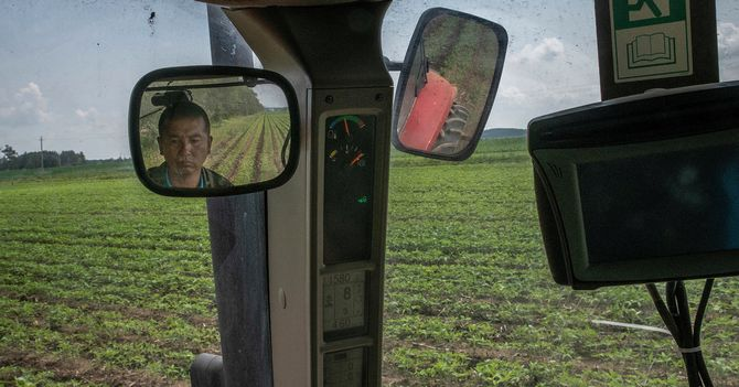 China's Taste for Soybeans Is a Weak Spot in Trade War With Trump