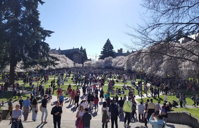 Here's why two Y Combinator partners made a recruiting trip to the Univ. of Washington in Seattle